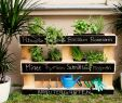 Sommerdeko Garten Einzigartig Immer Mit Vitaminen Versorgt Dank Selbstgebautem
