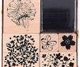Sommerparty Deko Luxus Paper Poetry Stempelset Bouquet Sauvage 5 Stück