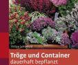 Stauden Garten Frisch Tröge Und Container