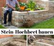 Stein Deko Garten Inspirierend Setze Auf Eigene Ernte Statt Supermarkt Mit Sem Selbst