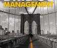 Steine Für Garten Best Of Bridge Management [pdf Document]