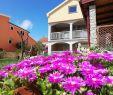 Steine Garten Elegant Apartmani Mala Sirena МасРеница – ОновРені ціни 2020