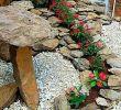 Steine Im Garten Best Of 30 Fantastic Front Yard Rock Garden Ideas