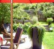 Steine Im Garten Inspirierend Muka Gestaltungssteine Kleine sortierung