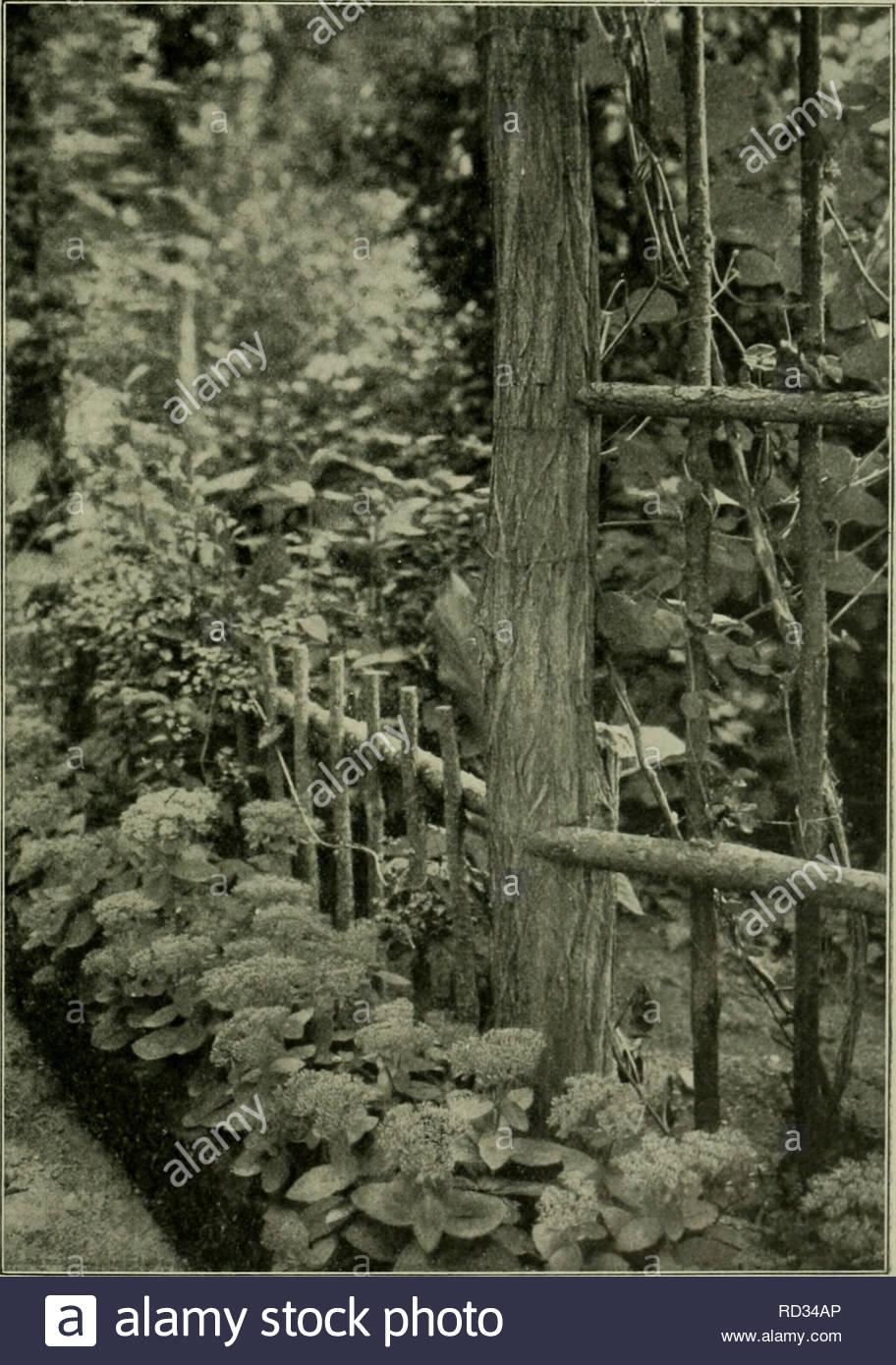 Steinfiguren Für Den Garten Selber Machen Neu –¡ Pflanze Stock S & –¡ Pflanze Stock Page 2