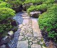 Steingarten Elegant Pin Auf Japanischer Garten