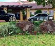 Steingarten Frisch Stein Garten Hotel Reviews Horizontina Brazil Tripadvisor