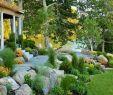 Steingarten Schön 70 Wundervolle Vorgärten Für Landschaft