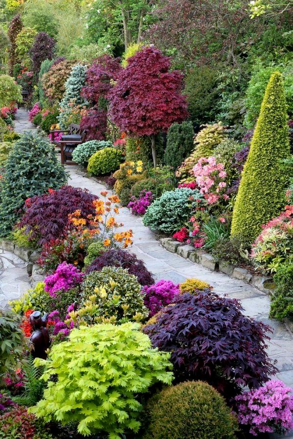 Sträucher Für Den Garten Best Of Schönheit Sträucher Für Den Garten Doppel Lila Pfingstrose