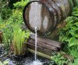 Teich Ideen Garten Frisch Water Feature In Garden