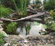 Teich Ideen Garten Neu Die 293 Besten Bilder Von Garten Teich Und Wasserfälle