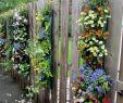Terrasse Mit Blumen Gestalten Inspirierend Overflowing Blossoms In Fence Hanging Planters