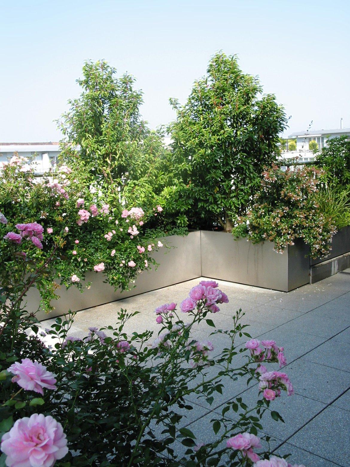 Terrasse Mit Blumen Gestalten Schön Dachgarten Salathé Rentzel Gartenkultur Ag
