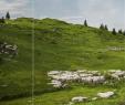 Terrasse Schön Gestalten Elegant Ggv 2015 Chiemgau Chiemsee