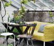 Terrassen Accessoires Schön 9x Inspiratie Voor Patio S En Terrassen Met Klimplanten
