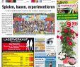 Terrassenbepflanzung Bilder Frisch Kw 17 2019 by Wochenanzeiger Me N Gmbh issuu