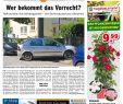 Terrassenbepflanzung Bilder Inspirierend Kw 17 2019 by Wochenanzeiger Me N Gmbh issuu