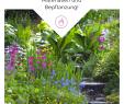 Terrassenbepflanzung Sichtschutz Best Of Die 112 Besten Bilder Von Terrassen Gestaltung I Veranda In