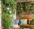 Terrassenbepflanzung Sichtschutz Schön 40 Terrassengestaltung Bilder Erneuern Sie Ihre Terrasse