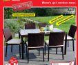 Terrassenbepflanzung Sichtschutz Schön Bauhaus 10 04 21 04 12 by Aktionsfinder Gmbh issuu