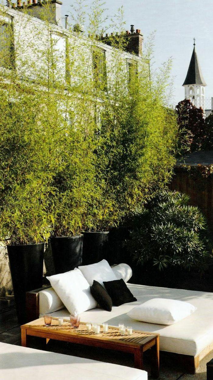 terrassenbepflanzung m C3 B6bel und balkonpflanzen lebendiger sichtschutz