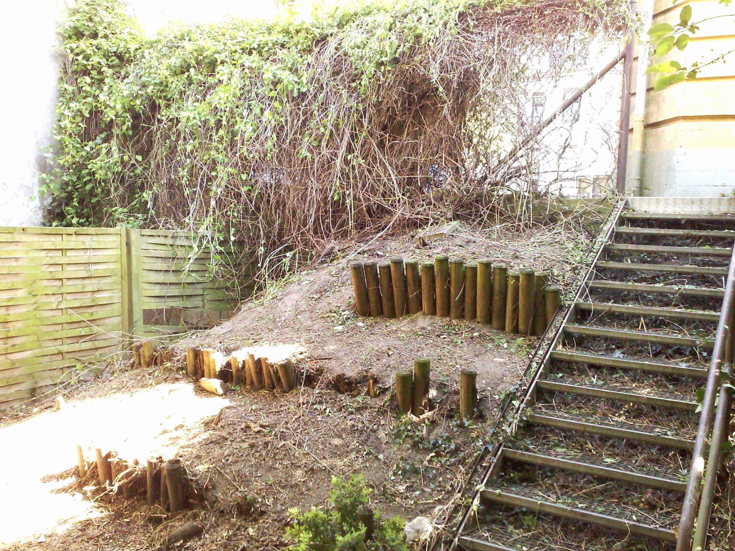 Terrassengestaltung Mit Pflanzen Best Of Outdoor Zen Garden Inspirational Outdoor Zen Garden Lit at