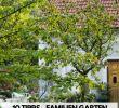 Tipps Zur Gartengestaltung Luxus Garten T Räume Für Familien Mit Sen 10 Tipps Vom Profi