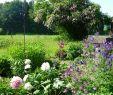 Traumgarten Best Of Traumgarten Allgäu Rettenberg – Aktualne Ceny Na Rok 2020