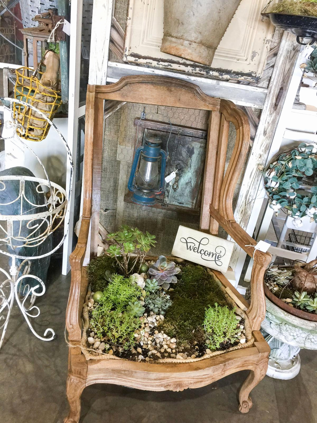 succulent rock garden luxury upcycling almost anything can be e planting container for of succulent rock garden 1