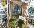 Upcycling Ideen Garten Einzigartig Upcycling Almost Anything Can Be E Planting Container for