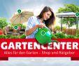 Vogelhäuser Hagebaumarkt Elegant Gartenartikel Im Gartencenter Von Hagebau Online Kaufen