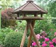Vogelhäuser Hagebaumarkt Luxus Vogelhäuser
