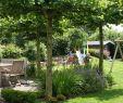 Vorgärten Gestalten Beispiele Schön Gartengestaltung Kleine Garten