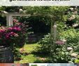 Vorgarten Gestalten Ideen Schön 40 Reizend Pinterest Garten Neu