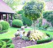 Vorgarten Gestalten Pflegeleicht Einzigartig 31 Inspirierend Garten Anlegen Bilder Schön