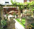 Vorgarten Pflanzen Pflegeleicht Inspirierend 36 Genial Hanglage Garten Das Beste Von