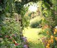 Vorgartengestaltung Bilder Elegant Garden Bee Picture Airyclub Alexstand