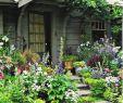 Vorgartengestaltung Bilder Schön Eshak Elghpery Eelghpery On Pinterest