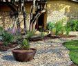 Vorgartengestaltung Modern Luxus Vorgarten Ideen Fürs Vorgarten Gestalten Freshouse