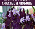 Wagenrad Deko Einzigartig Home Decor найкращі зображення 162