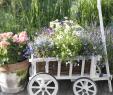 Wagenrad Deko Garten Inspirierend Vintage Garten Bollerwagen Mit Blumen Bepflanzen