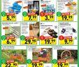 Wagenrad Deko Neu Penny Markt Angebote Seite No 12 14 Gültig Von 28 5