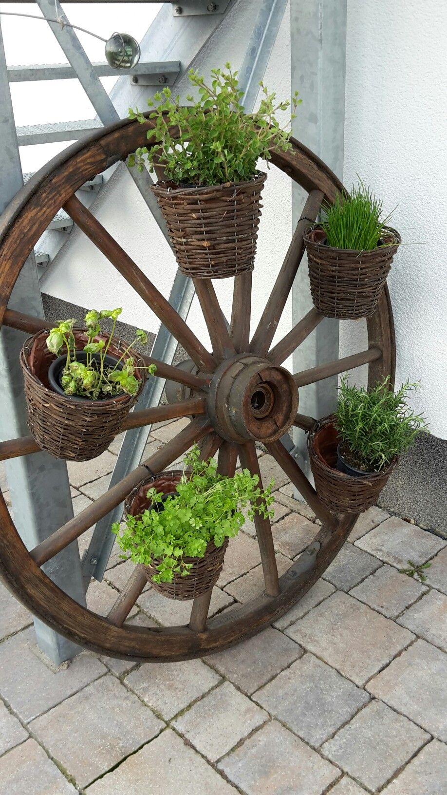 Wagenrad Deko Schön Wagenrad Als Kräutergarten Idei De Ncercat