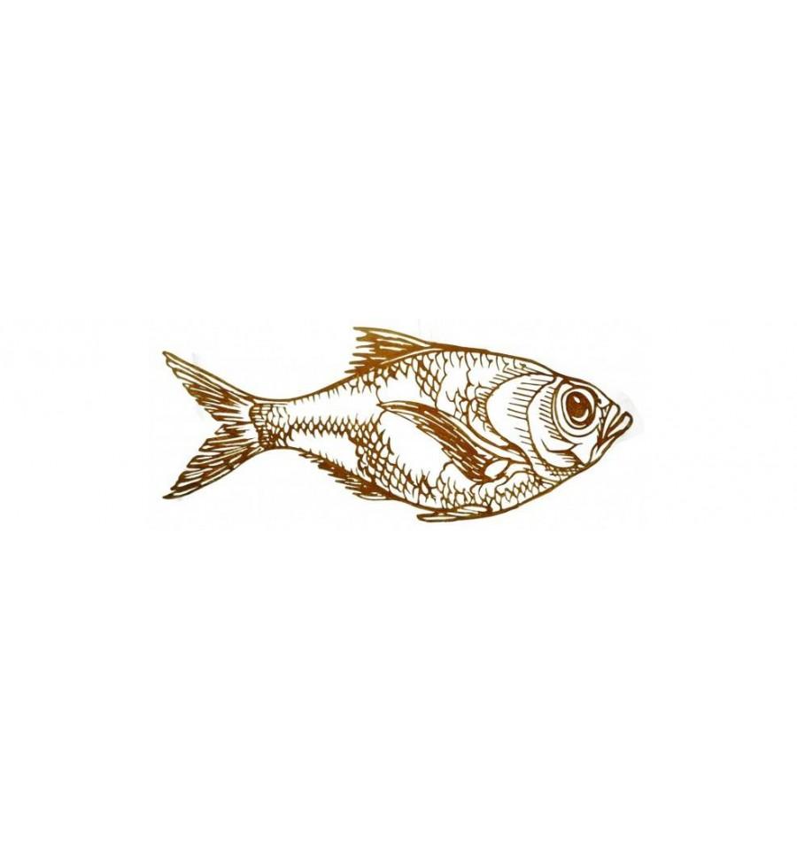 edelrost wandbild fisch dorade lange 72 cm zum hangen fur heim und garten gartenschild als wandschmuck aus rostigem metall