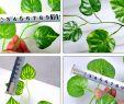 Wanddeko Garten Best Of Pflanzen Kunstblumen & Pflanzen Outus 12 Stück Efeugirlande