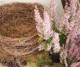 Wanddeko Terrasse Neu Diy Deko Für Herbst Und Winter Natürlich Mit Moos Erika