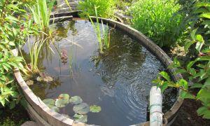 39 Schön Wasser Garten
