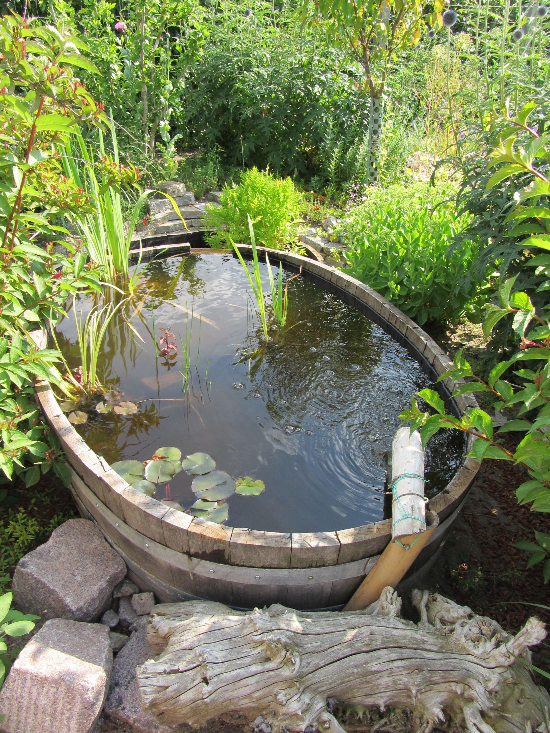 Wasser Im Garten Frisch Wasser Im Garten