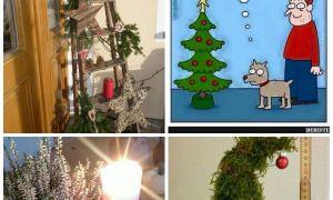 30 Inspirierend Weihnachts Gartendeko