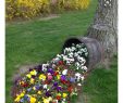 Weinfass Deko Garten Best Of Pin by Valentyna Kononova On Garden